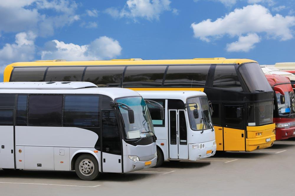 Bild mit Bussen